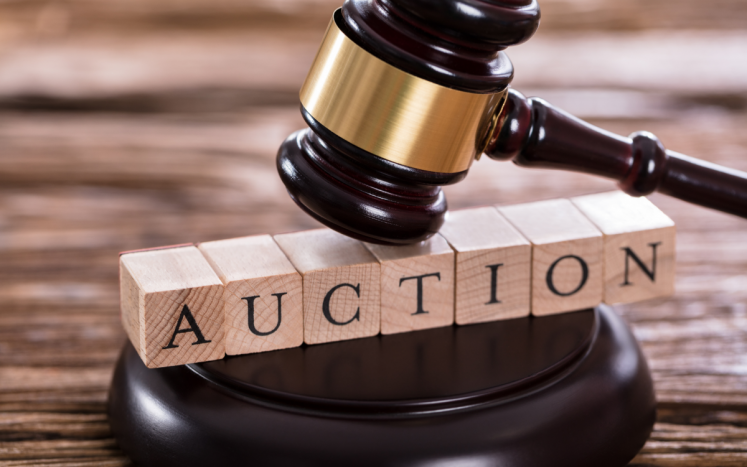 Town Property Auction